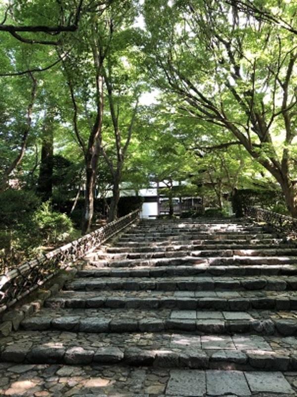 朝の龍安寺